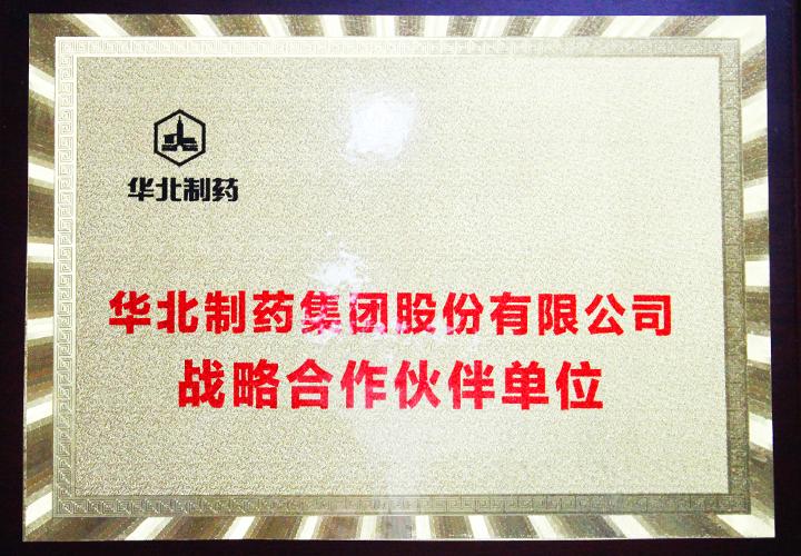 易视界-华北制药集团股份有限公司战略合作伙伴单位