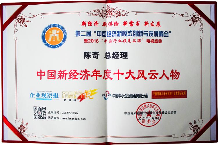易视界总经理陈奇先生荣获中国新经济年度十大风云人物
